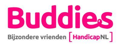 Buddies bijzondere vrienden logo